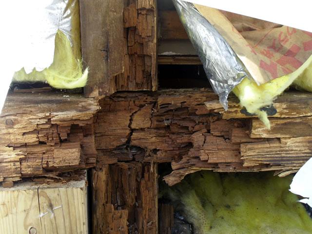 雨漏り被害による木材の腐食